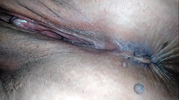 Pussy lover