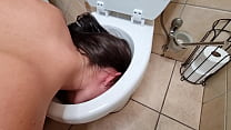 Pissing and licking the inside of toilet | toil...