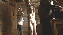A nice female full frontal nude scene in a main...