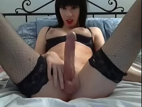 Big Cock Shemale Bareback Hd