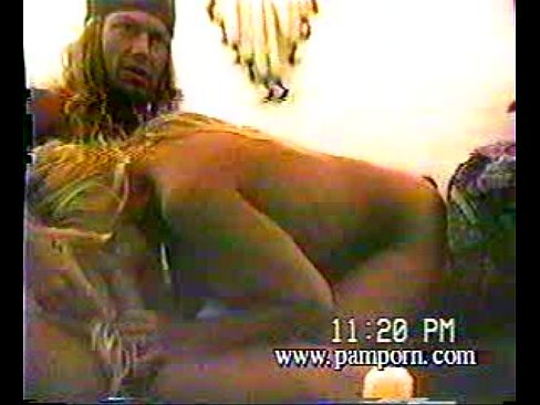 Brett michaels pamela anderson sex tape