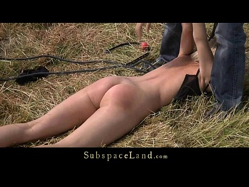 Blonde leashed, gagged and fucked on the plain